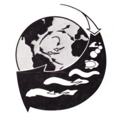 evolution-emblem